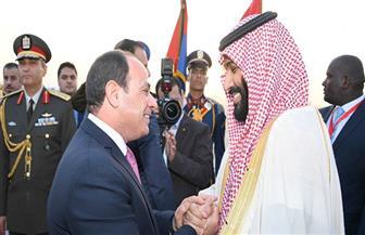 سياسيون وحزبيون: مصر والسعودية محور ارتكاز العالم العربي.. والدرع الواقي لأمن المنطقة