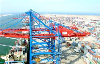 تداول 20 سفينة حاويات وبضائع عامة بموانى بورسعيد خلال 24 ساعة