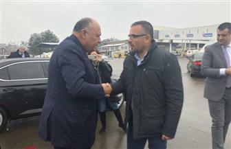 وزير الزراعة الصربي يودع سامح شكري بمطار بلجراد قبل توجهه للخرطوم| صور
