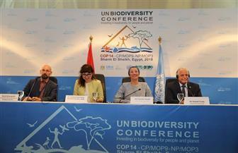 وزيرة البيئة تعلن التصديق على الإعلان الرئيسى لمؤتمر الأمم المتحدة للتنوع البيولوجي