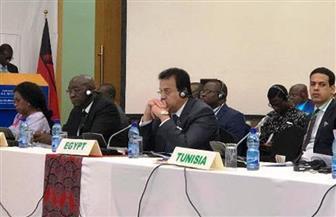 """وزير التعليم العالي يلقي كلمة مصر نائبا عن الرئيس السيسي أمام قمة """"C10"""" لرؤساء إفريقيا بمالاوي"""