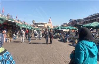 شاشات عرض فى مراكش لحضور حفل افتتاح المهرجان الدولى للفيلم| فيديو وصور