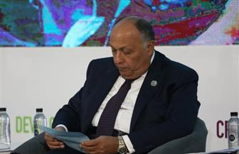 وزير الخارجية: مصر شكلت لجنة وطنية لتنفيذ أجندة 2063