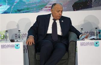 وزير الخارجية: القارة الإفريقية في حاجة لتكثيف الجهود من أجل التغلب على الفقر