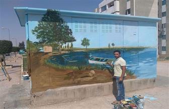 فنان مصري يحول أكشاك الكهرباء بالشوارع إلى لوحات فنية | صور