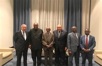 وزير الخارجية يلتقي كبار مسئولي لجنة نقاط الاتصال بالآلية الإفريقية لمراجعة النظراء