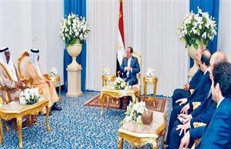 الرئيس السيسي يلتقي رئيس ديوان ولي عهد أبوظبي ويعرب عن تقديره للمشاركة الإماراتية في منتدى شباب العالم