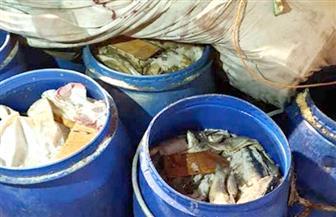 ضبط 122 برميل فسيخ فاسد و5 كلاب مذبوحة في أرض الصوب الزراعية بشبرا الخيمة