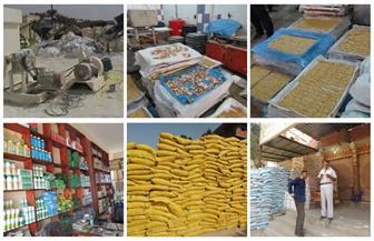 شرطة البيئة والمسطحات تضبط قضايا غش تجاري في 3 محافظات| صور