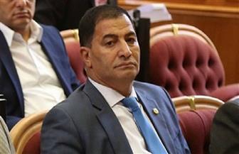 البدري ضيف: قرارات الرئيس السيسي بشأن الأجور والعلاوة انفراجة للمصريين