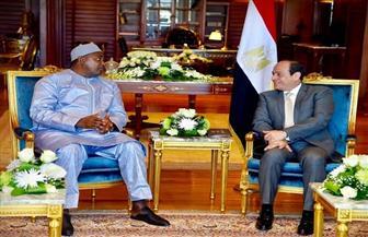 الرئيس السيسي لنظيره الجامبي: مصر مستعدة لدعم جامبيا بكل المحافل القارية والدولية | صور