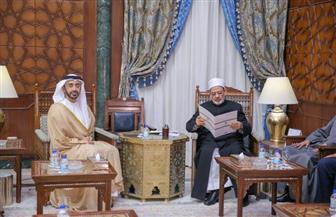 وزير خارجية الإمارات: جهود الإمام الأكبر باتت السلاح الأول في المعركة ضد التطرف والإرهاب |صور