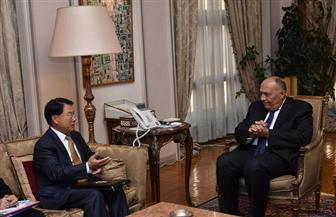 وزير الخارجية يلتقي مدير عام منظمة اليونيدو  صور