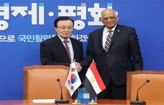 علي عبدالعال يلتقي رئيس وزراء كوريا الجنوبية ويبحث زيادة استثمارات بلاده في مصر| صور