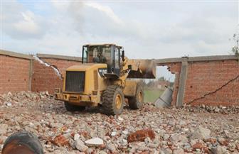 إزالة 2011 حالة تعد على الأراضي الزراعية بكفرالشيخ |صور