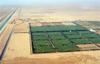 """""""الريف المصري"""" تستعد لرصف طريق """"المغرة"""" بتكلفة 400 مليون جنيه"""