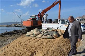 حملة مكبرة لإزالة تعديات وتطوير 4 مراكز في كفر الشيخ | صور