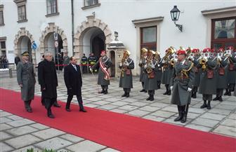 """""""الوفد"""": زيارة الرئيس السيسي للنمسا تؤكد قوة علاقات مصر الخارجية"""