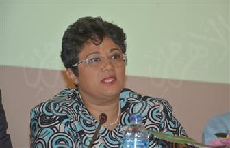 """المستشار القانوني للاتحاد الإفريقي: مصر ستأتى بأولوياتها في قمة ٢٠١٩.. واستكمال الملف الإصلاحى """"ضرورة"""""""