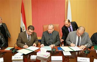 3 بروتوكولات تعاون مع هيئة تعليم الكبار لمحو الأمية بكفر الشيخ | صور