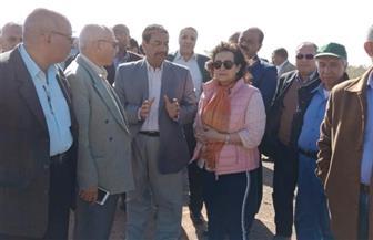نائب وزير الزراعة ورئيس البحوث الزراعية يتفقدان محطة بحوث بتوشكى   صور
