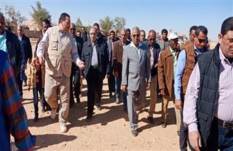 وزير الزراعة يتفقد أنشطة القوافل البيطرية بكلابشة فى أسوان