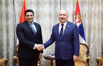 سفير مصر في بلجراد يبحث مع وزير الابتكار والتنمية الصربي التعاون في تكنولوجيا المعلومات
