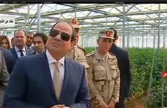 """""""قومي التنمية الزراعية"""" يشيد بافتتاح الرئيس السيسي 7100 صوبة زراعية.. ويؤكد: نقلة نوعية كبيرة"""