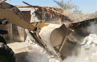إزالة 81 حالة تعد على الأراضي الزراعية ورفع 273 طن قمامة ومخلفات بقنا| صور