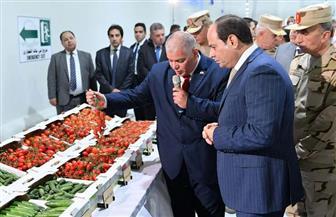 الكمار: الصوب الزراعية أحد أهم المشروعات التي افتتحها الرئيس السيسي