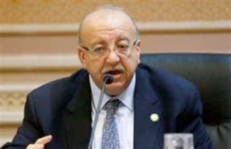 """رئيس """"إسكان النواب"""": مصر شهدت قفزة هائلة وإنجازا تاريخيا في تنفيذ مشروعات قومية عملاقة"""