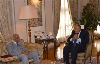وزير الخارجية يلتقي رئيس هيئة قضايا الدولة | صور