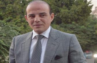 """برلماني: """"مصر نورت بفضل القيادة السياسية"""""""