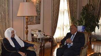 شكري يبحث آفاق العلاقات المصرية - السعودية مع رئيس مجلس الشورى السعودي | صور
