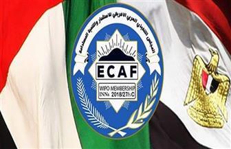 رئيس المجلس العربي الإفريقي: نستهدف ضخ استثمارات بنحو 30 مليون جنيه بمصر
