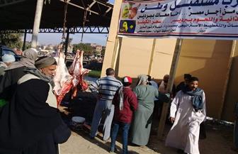 مستقبل وطن في سوهاج يواصل بيع اللحوم بأسعار مخفضة في 4 مراكز | صور