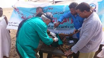 غرفة عمليات لبيطري القاهرة وتلقي شكاوى المواطنين استعدادا لعيد الفطر