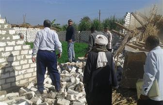 إزالة 43 حالة تعد على الأراضي الزراعية بمركز فرشوط بقنا | صور