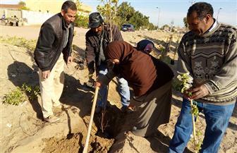 """إنشاء أكبر متنزه في قرى الوادي الجديد بـ """"ناصر الثورة""""   صور"""