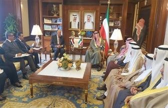 وزير الخارجية يشيد بمواقف الكويت الداعمة لمصر