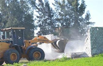 إزالة 96 حالة تعد على الأراضي الزراعية ومبان بدون ترخيص بسوهاج