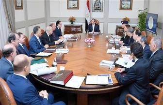 الرئيس السيسي يستعرض موقف المخزون الإستراتيجي من السلع الأساسية