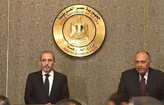 وزير خارجية الأردن: نريد تحركا عربيا فعالا لحل القضية الفلسطينية وإنهاء المأساة بسوريا