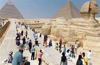 نداء من مرشدين سياحيين بسبب إحاطة القمامة بالآثار