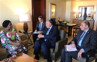 وزير الخارجية يلتقي سكرتير عام الكوميسا على هامش اجتماعات منتدى إفريقيا 2018  صورة