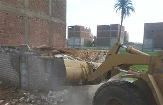 إزالة 10 حالات تعد على الأراضي الزراعية بطهطا في سوهاج  صور