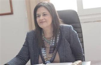 """عميد إعلام القاهرة: """"الشيوخ"""" سيضم خبراء ومتخصصين.. والمرأة أصبحت رقما  مؤثرا بالمعادلة السياسية"""
