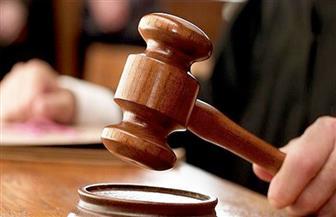 """حجز محاكمة 9 متهمين بـ""""اتحاد الجرابيع"""" لجلسة 22 فبراير للحكم"""