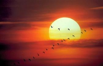 خير يوم طلعت فيه الشمس.. الجمعة | فيديو