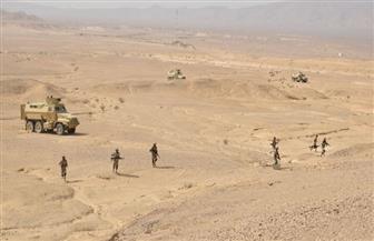 بيان رقم 10 من القوات المسلحة: القضاء على 4 إرهابيين شديدي الخطورة وقصف مدفعي على 166 هدفا بسيناء